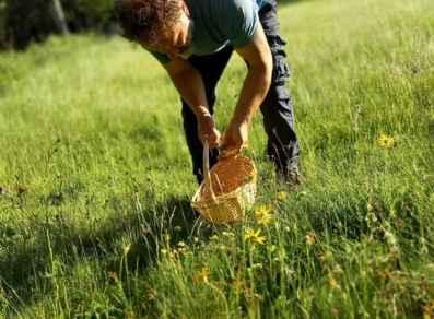 Il buono della natura - Settimana Ideale - EH8