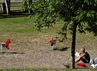 Aree picnic e punti fuoco - G2
